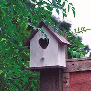 Heart Bird Box