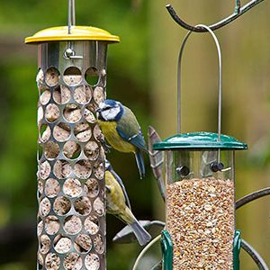 Peckish Bird Food