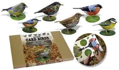 Garden Birds Craft Kit
