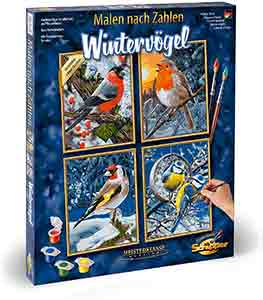 Winter Birds Paint By Number Kit