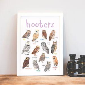 'Hooters' Illustrated Bird Art Print