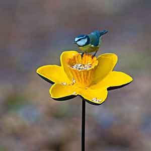 Cast Iron Daffodil Bird Feeder