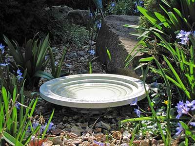 Nature Oasis Ground Bird Bath