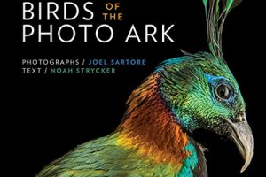 Bird Photography Book