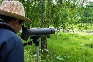 Bird Watching Looking Through Scope