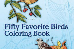 Birds Colouring In Books