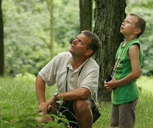 Father And Son Birdwatching