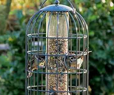The Nuttery Bird Feeders