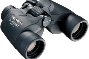 Olympus 8×40 DPS I Binoculars