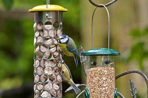 Peckish Bird Food