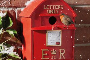 Post Box Bird House