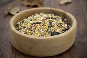 Ultiva Bird Food