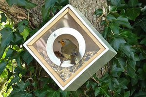 Urban Bird Feeder